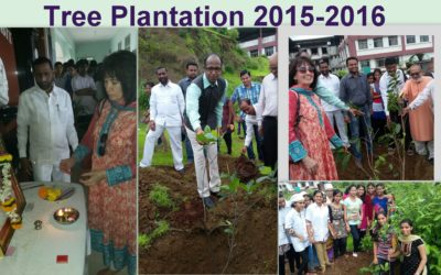 12 2015-2016 Tree Plantation